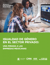 Gender Equality in the Private Sector: An Insight into Mexican Companies