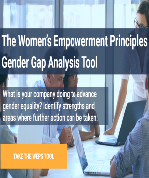 WEPS Gender Gap Analysis Tool
